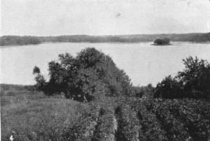 (4) Großer Lawicaer See