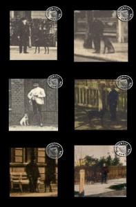 Hunde in Neutomischel - Ausschnitte aus alten Ansichtskarten aus der Sammlung des Wojtek Szkudlarski