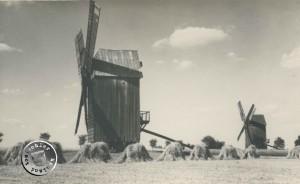 Bockwindmühlen im Tomischler Hauland - Fotoaufn. Enderich, in Privatbesitz