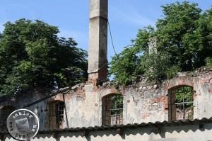 Das einstige Kirchenschiff - heute eine Ruine / Aufn. GT