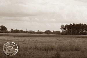 Landschaft bei Nowa Boruja - Bild EA