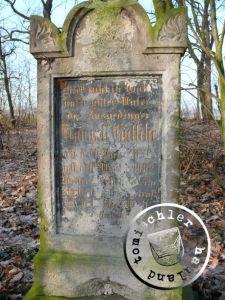 Grabstein des Traugott Gutsche auf dem Friedhof Boruy / Aufnahme Przemek Mierzejewski