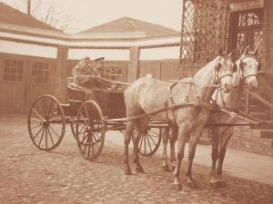 Pferdegespann um 1920 / Bild: https://commons.wikimedia.org/wiki/File:Opalenicka_KD_1920_fot16.jpg?uselang=de