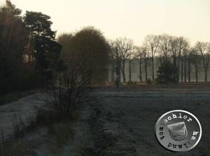 Wälder um Nowy Tomyśl - Aufn. PM